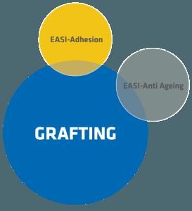 Grafting_model